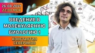 Константин Северинов. Введение в молекулярную биологию. Лекция 1: Клетки, Гены, ДНК.