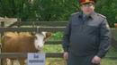 Воронины - 4 сезон, 19 серия Сериал — от 19.12.2012 смотреть онлайн бесплатно в хорошем качестве
