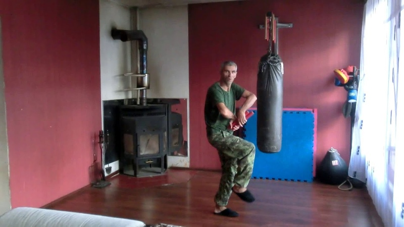 Стиль орла и змеи Universal combat system 14