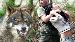 Хищник не оставил маньяку ни единого шанса, за девушку он готов был разорвать...