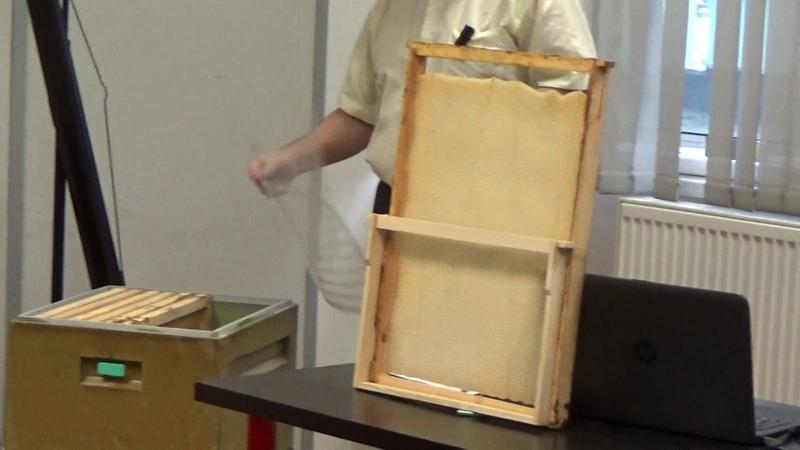 Конференция. Николай Гурышев, содержание пчёл в ульях на Рамку 435 на 460мм. От 20кг мёда.