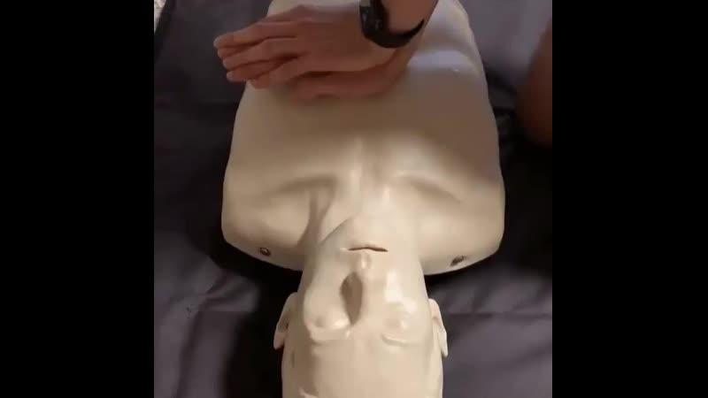 Циркуляция крови во время сердечно лёгочной реанимации
