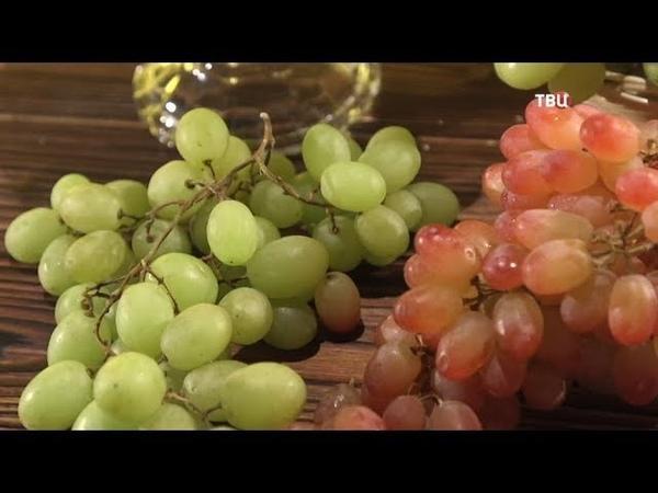 Виноград зеленый кишмиш Естественный отбор