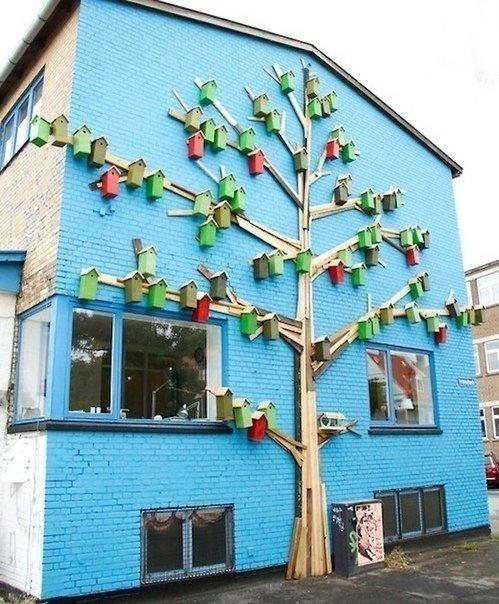 Птичьи многоэтажки