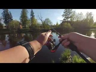 Тестируем на воде спиннинг Silver Stream Salamander и катушку Kastking Sharky II.