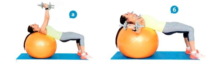 Упражнения для красивого бюста, изображение №3