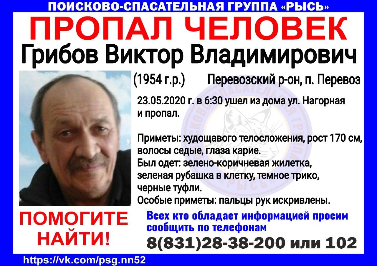 Грибов Виктор Владимирович, 1954 г.р.<br> Перевозский р-он, п. Перевоз