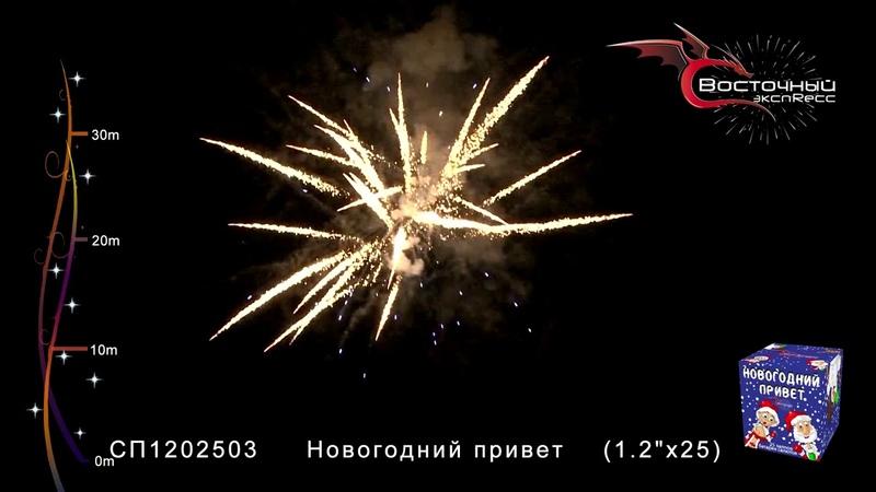 Новогодний привет СП12025031 www salut vl ru