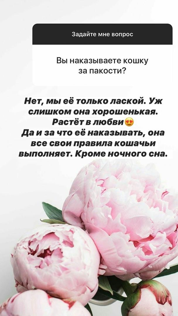 https://sun9-48.userapi.com/c857136/v857136809/1cb0dc/oqZ-CaRvnIo.jpg