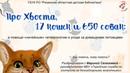Про Хвоста, 17 кошек и 650 собак разговариваем с Мариной Селезневой