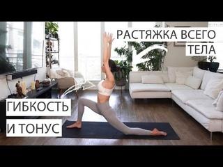 Растяжка для начинающих на все тело | Эффективные упражнения на гибкость