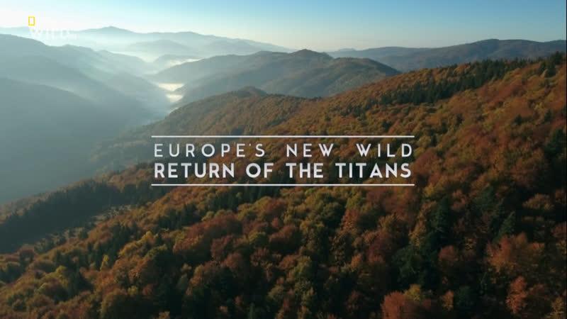 Новая дикая природа Европы Возвращение титанов 1 серия из 6 2020 HD 1080