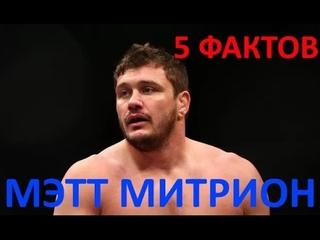 5 фактов - МЭТТ МИТРИОН. Будущий соперник Федора Емельяненко!