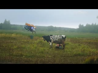 Рекламный ролик Рязанской деревни