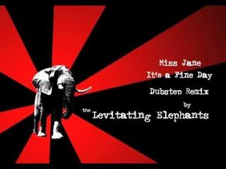 Miss Jane - It's a Fine Day (Levitating Elephants Dubstep Remix) Free DL!!