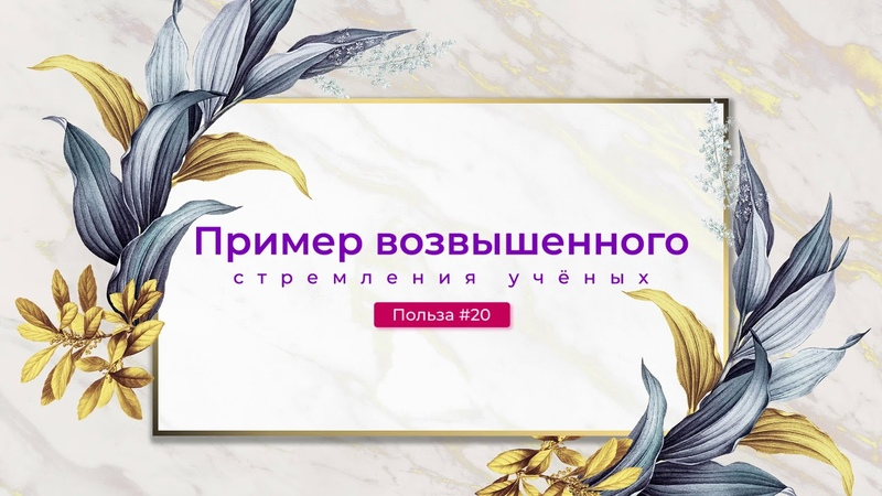 Абу Абдуллах Ар Руси 20 Пример возвышенного стремления учёных