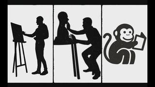 Могут ли у обезьяны возникнуть авторские права? Разбор кейса