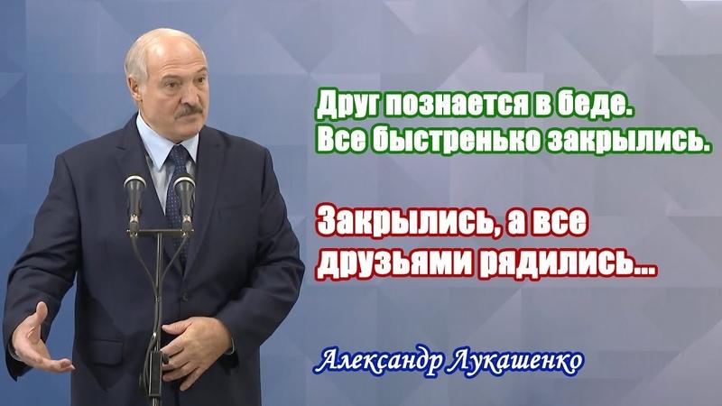 Лукашенко Друг познается в беде Все быстренько закрылись Закрылись а все друзьями рядились