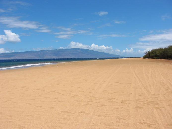 5 лучших диких пляжей Мира, изображение №4