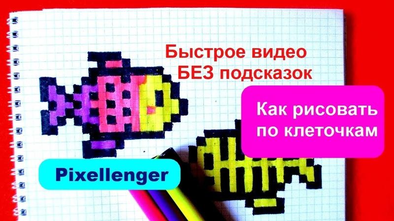 Челлендж Быстро - Медленно 2 Как рисовать Рыбку по клеточкам How to Draw Pixel Art for Kids