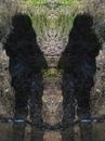Личный фотоальбом Ксении Богомоловой