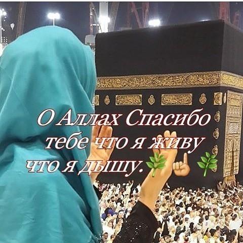Фото спасибо аллаху за все
