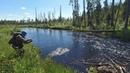 РЫБА ЕСТЬ. Рыбалка на малой реке. Ультралайт на таёжной речке. Рыбалка на севере. Супер результат!