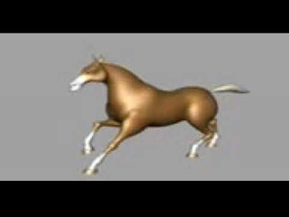 цыганский конь бежит под цыганскую музыку
