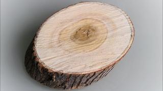 КРАСОТА НЕОБЫКНОВЕННАЯ к ПАСХЕ своими руками. DIY. Пасхальная композиция на спиле дерева.