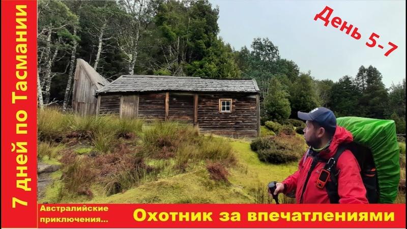 Ужасы тасманийского леса Зимний поход по дождевым лесам горам и болотам Тасмании День 5 7