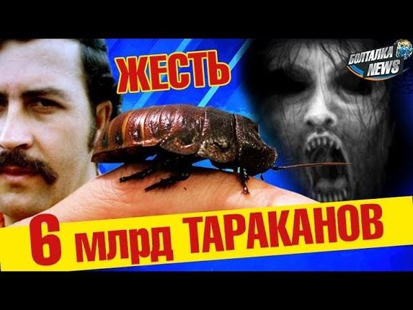 Ужас! 6 млрд тараканов! Девушка в багажнике Эпичный фейл автостроителей Китай, Беларусь