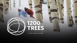 1200 Trees ft. Anna Gasser & Christian Haller | Burton One World