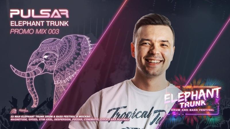 DIMA PULSAR Elephant Trunk promo mix 003 2021