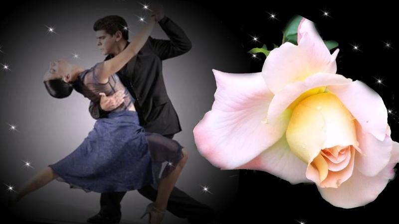 безумно чувственное танго любви и страсти Mad Manoush Night Tango Ночное танго