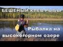 БЕШЕНЫЙ КЛЕВ РЫБЫ НА ГОРНОМ ОЗЕРЕ 16 Рыбалка на спининг. Ленок, хариус и таймень