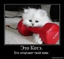 Фотоальбом Дениса Гребенченко
