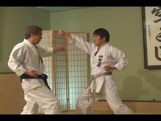 Сётокан каратэ. Х. Канадзава - TE WAZA - техника рук. Удары, блоки, комбинации.