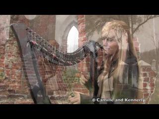 Американские сестры-близнецы игрют на арфах!!! The Cranberries - Zombie, Electric Harp Duet - Camille and Kennerly, Harp Twins