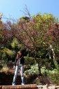 Anita Yuen фотография #26