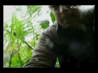 Discovery channel İnanılmaz Kurtuluş Ekvator