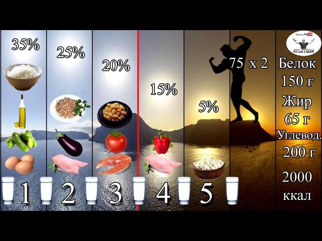 Дохідливо про правильне харчування для спалювання жиру і набору м'язової маси Частина 2 СХЕМА РАЦІОНУ