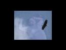 CJ Slank - Bears love (2010)