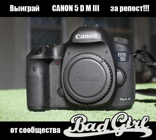Фото №376567339 со страницы Валентины Слепокуровой
