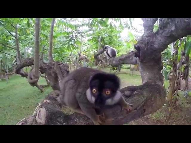 Остров Нуси Бе Мадагаскар