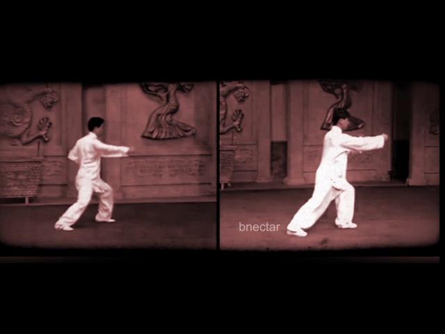 Chen Style Taiji & Yang Style Taiji (Tai Chi) Side by Side