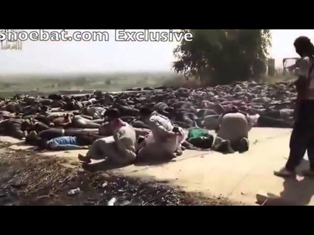 73 Геноцид езидов В Ираке ИГ ИГИЛ STOPISIS shingal 2014 STOPTERROR