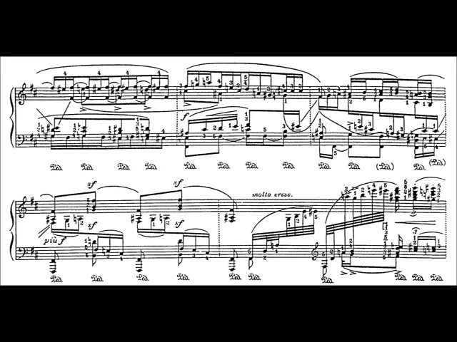 Godowsky Passacaglia in B Minor Siirala