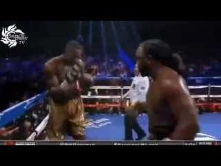 Deontay Wilder vs Bermane Stiverne Highlights