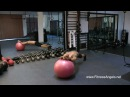 Top 10 Swiss Ball Exercises: Build Strong CoreFull Body Strength