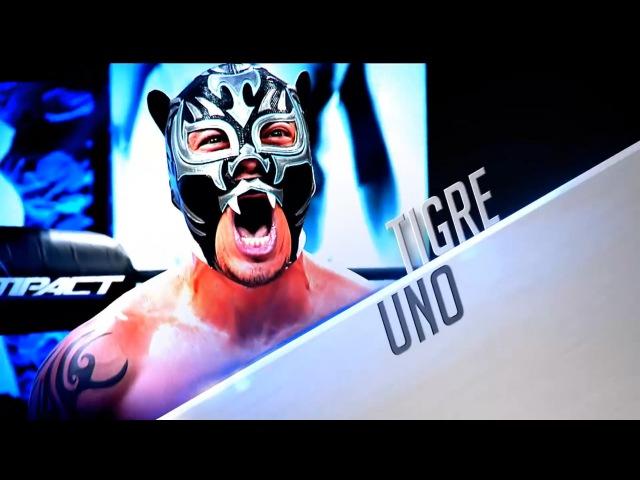 Tigre Uno (Xtreme Tiger) Kill Our Way To Heaven